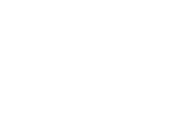 Skytron, LLC